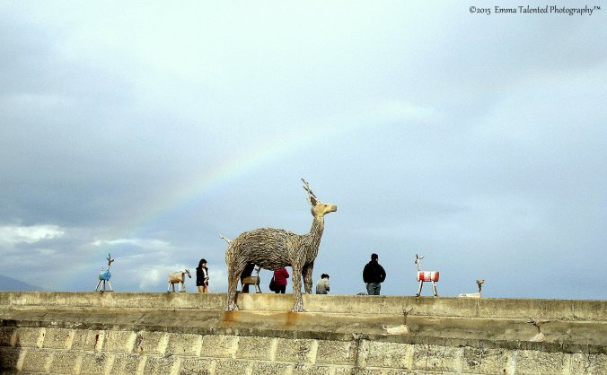 2015-12-19-6308 pisirian rainbow.jpg